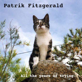 "PATRIK FITZGERALD : ""All the years of trying"", Vivonzeureux! Records, 2005"